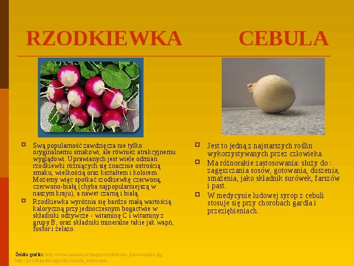 Co uprawiają i hodują ludzie w Polsce? - Slajd 28