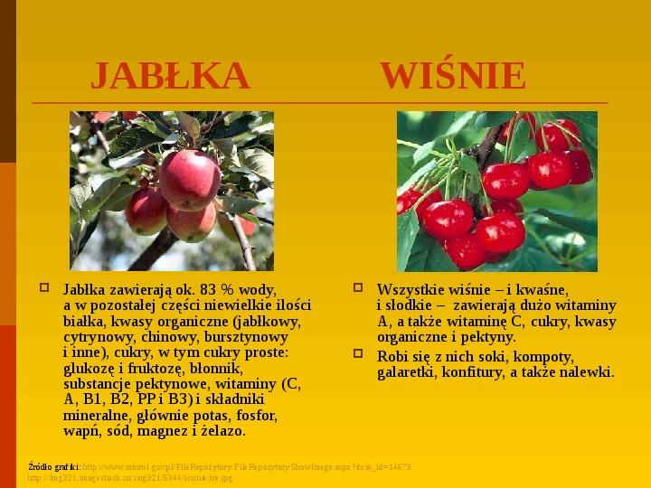 Co uprawiają i hodują ludzie w Polsce? - Slajd 33