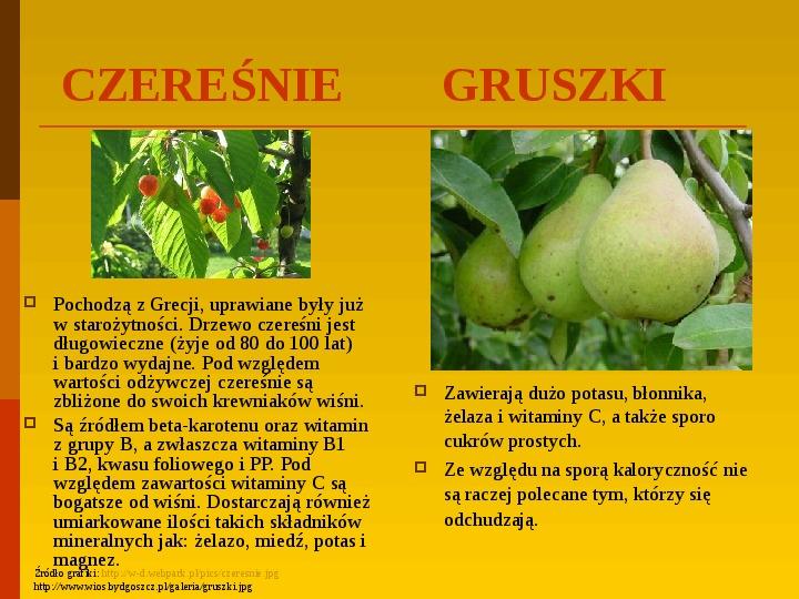 Co uprawiają i hodują ludzie w Polsce? - Slajd 34