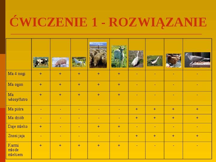 Co uprawiają i hodują ludzie w Polsce? - Slajd 38