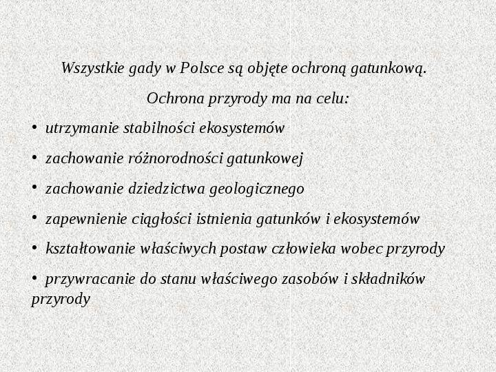 Gady Polski - Slajd 11