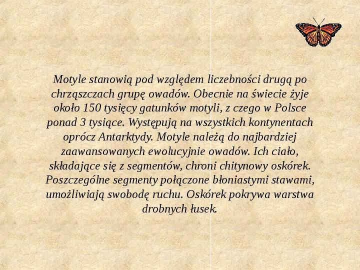 Motyle Polski - Slajd 1