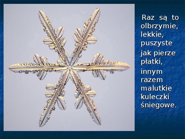 Płatki śniegu - Slajd 2