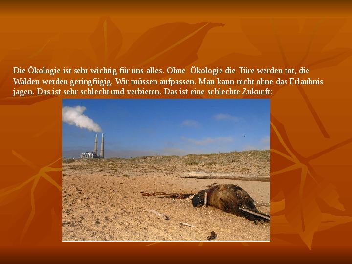 Ekologia - Slajd 3