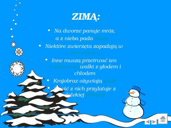 Zima - Slajd 3