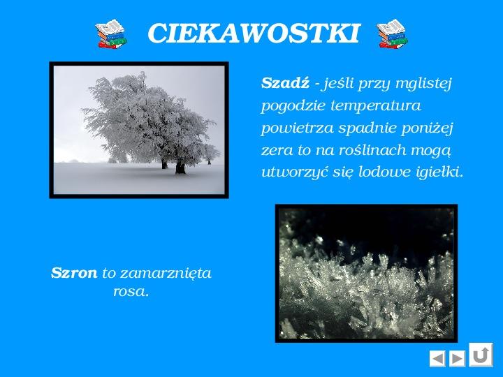 Zima - Slajd 5