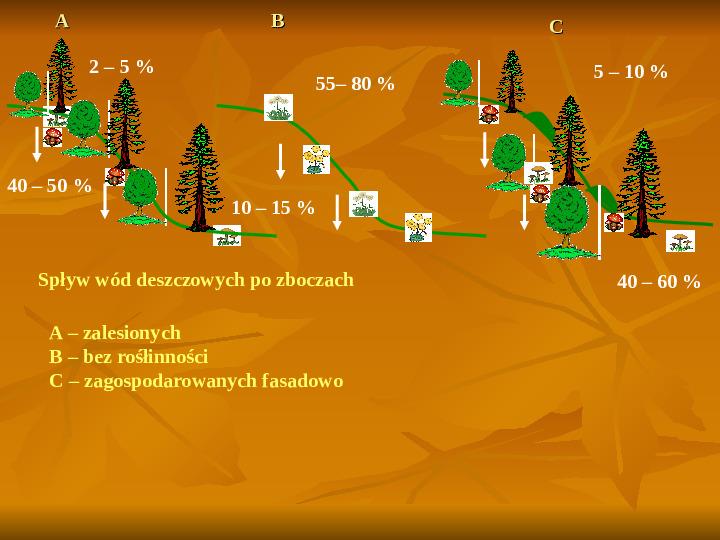 Degradacja gleb i lasów - Slajd 3