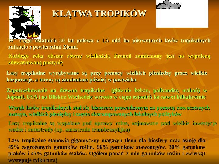 Degradacja gleb i lasów - Slajd 12