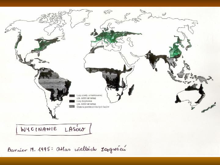 Degradacja gleb i lasów - Slajd 13