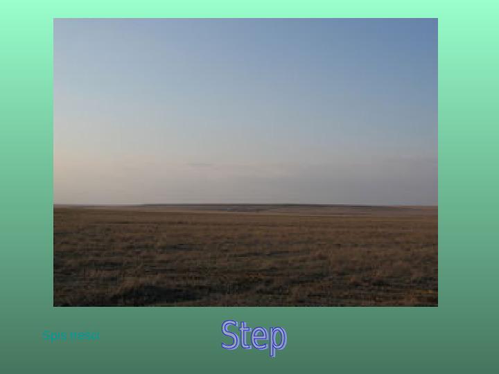 Biomy Ziemi - Slajd 10