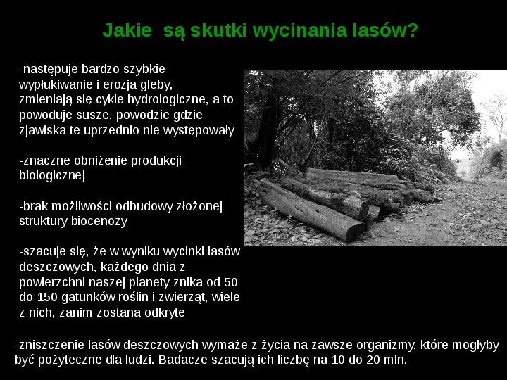 Ochrona lasów tropikalnych - Slajd 5