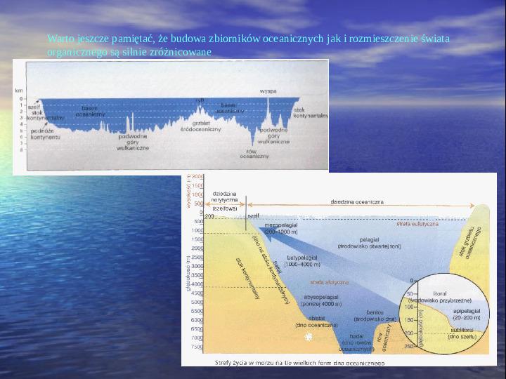 Morza i oceany - Slajd 12