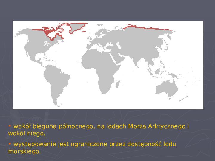 Państwa zwierzęce - palearktyka i nearktyka - Slajd 74