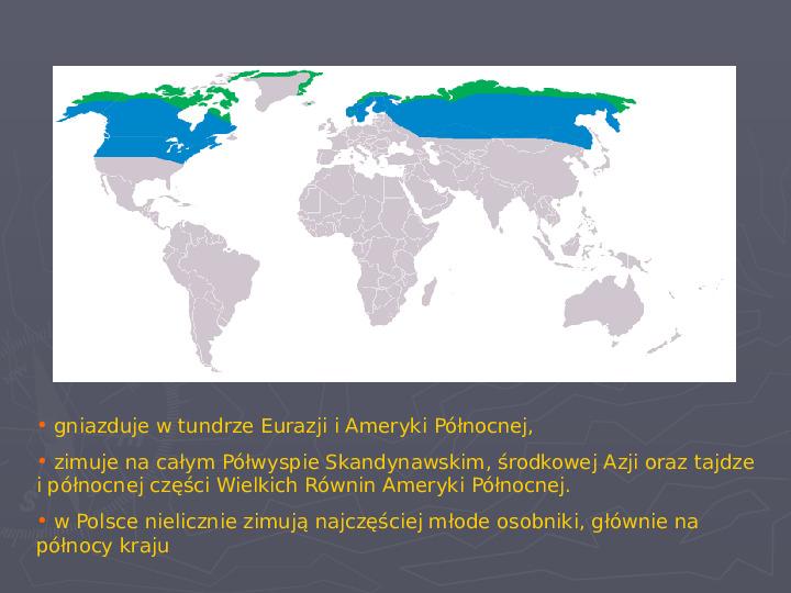 Państwa zwierzęce - palearktyka i nearktyka - Slajd 79