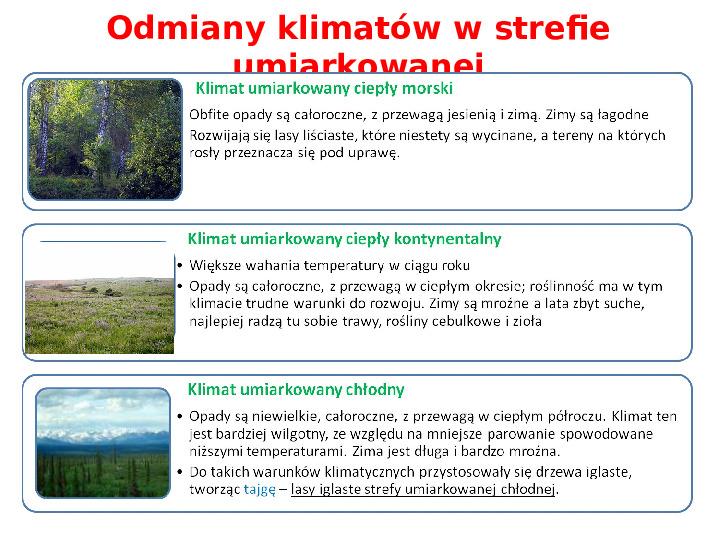 Pogoda i zróżnicowanie klimatyczne świata - Slajd 15
