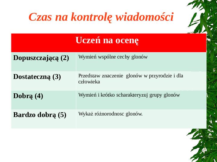 Poznaj grzyby i porosty - Slajd 1