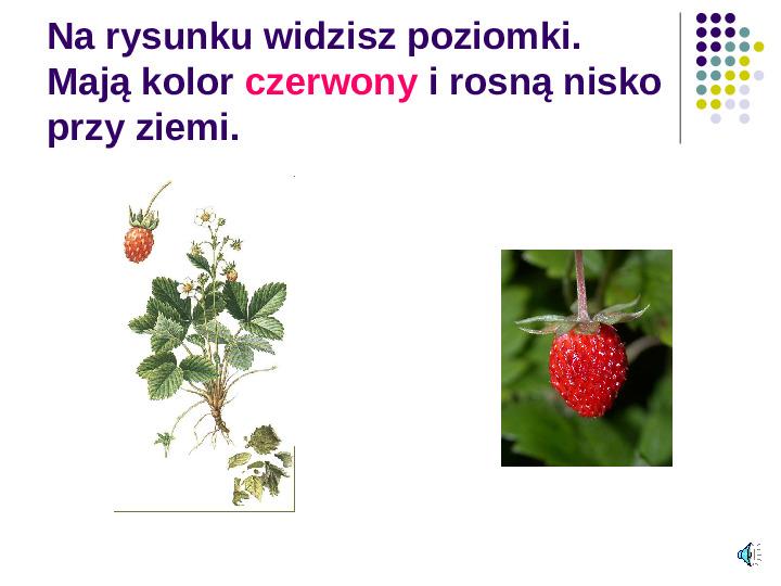 Poznajemy owoce - Slajd 9