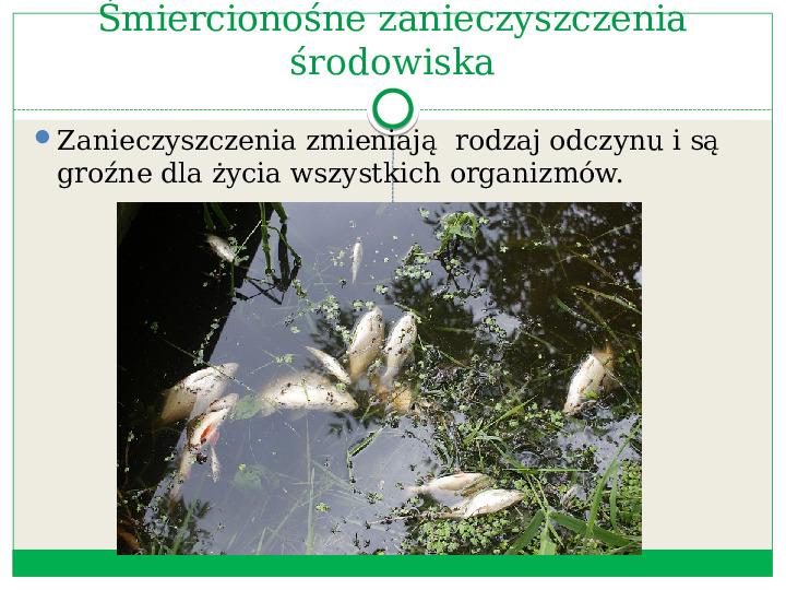 Roztwory wodne w przyrodzie - Slajd 7