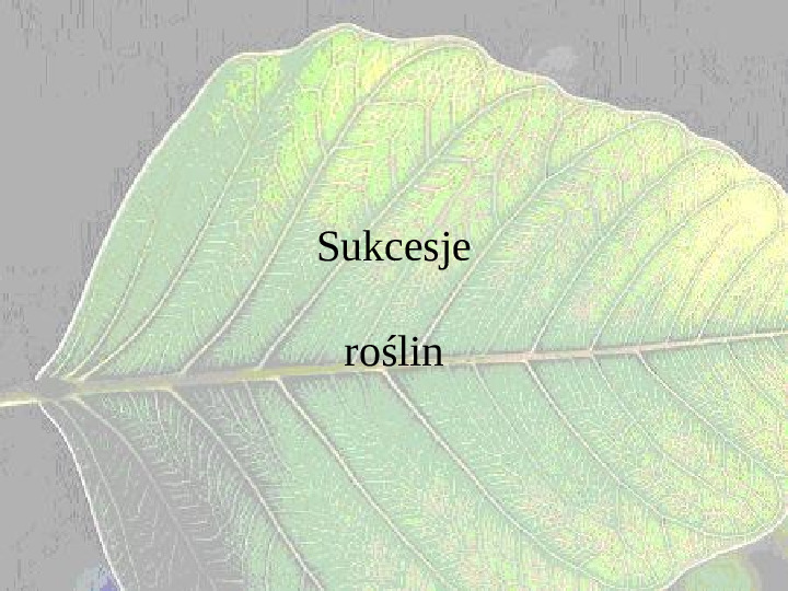 Sukcesje roślin - Slajd 1