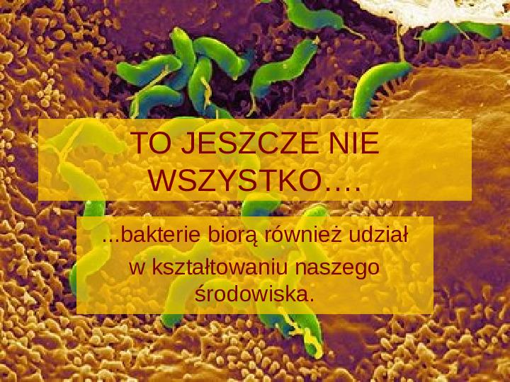 Tajemnice bakterii - Slajd 8