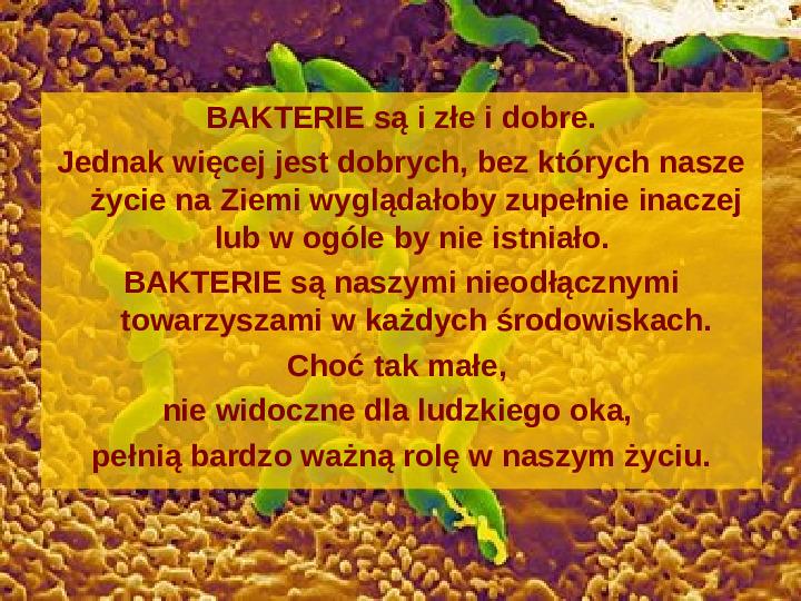 Tajemnice bakterii - Slajd 15