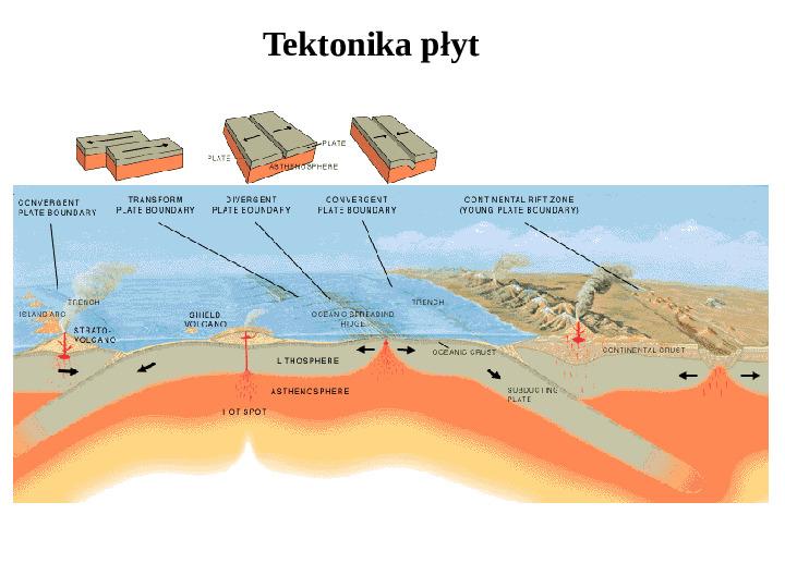 Tektonika płyt - Slajd 8