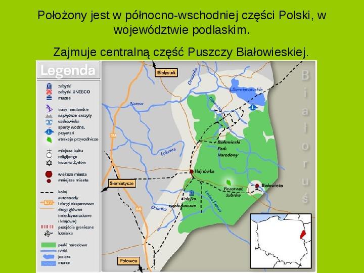 Białowieski Park Narodowy - Slajd 1