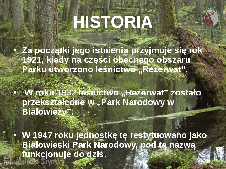 Białowieski Park Narodowy - Slajd 2