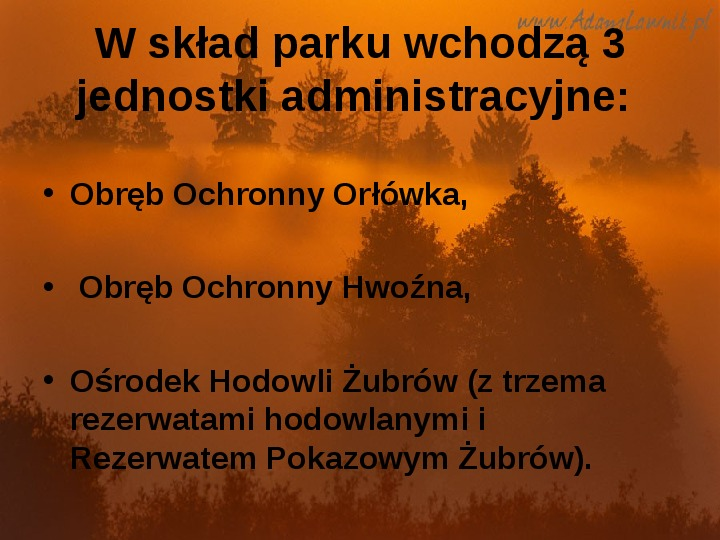 Białowieski Park Narodowy - Slajd 4