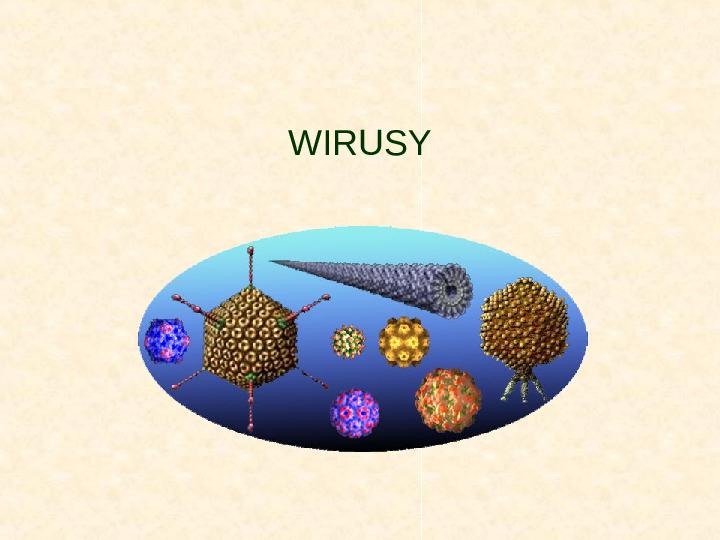 Wirusy - Slajd 1