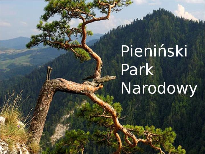 Pieniński Park Narodowy - Slajd 1
