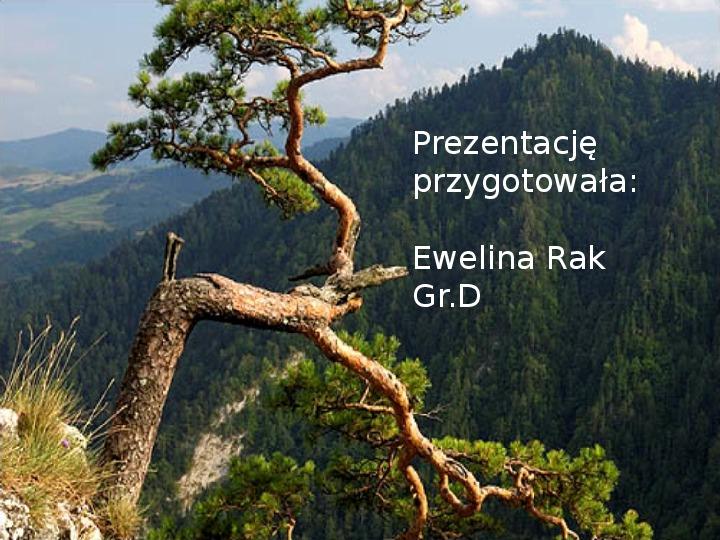 Pieniński Park Narodowy - Slajd 14