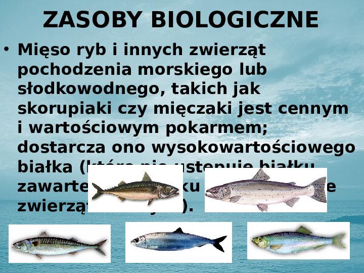 Zasoby biologiczne Atlantyku - Slajd 2