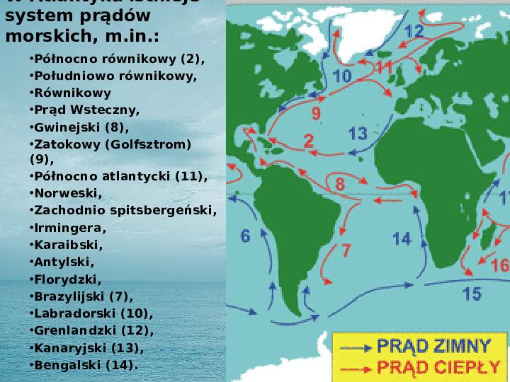 Zasoby biologiczne Atlantyku - Slajd 7