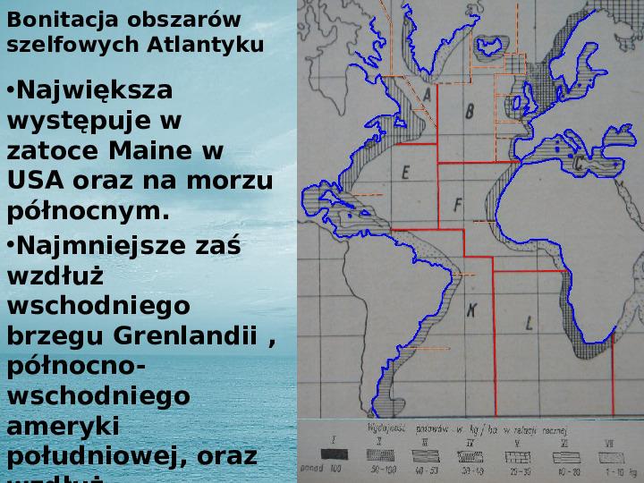 Zasoby biologiczne Atlantyku - Slajd 13