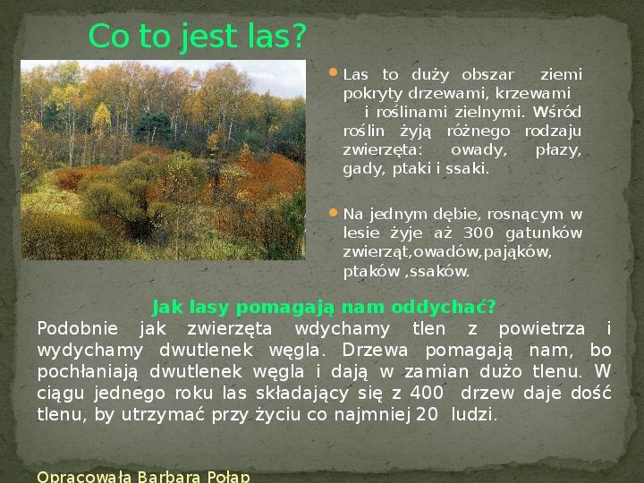 Las i jego mieszkańcy - Slajd 1