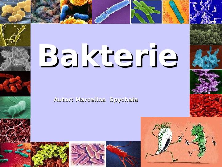 Bakterie - Slajd 1