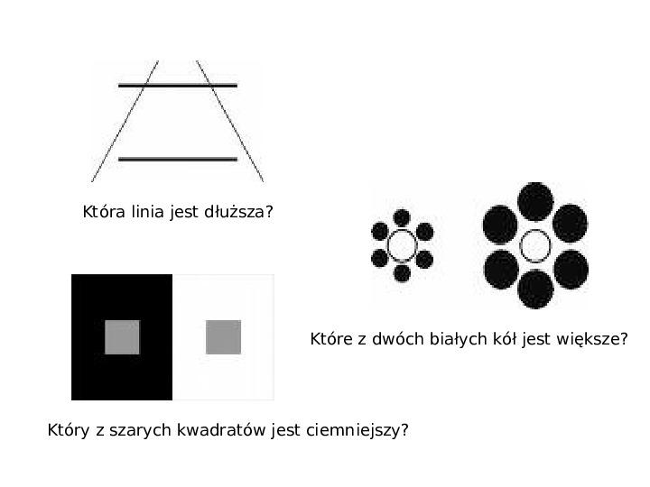 Złudzenia optyczne - Slajd 4