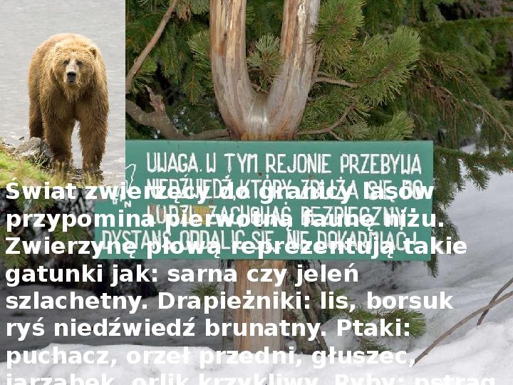 Tatry polskie - Slajd 7