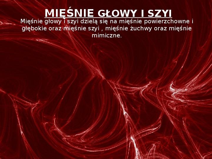 Mięśnie - narządu ruchu czynnego - Slajd 21