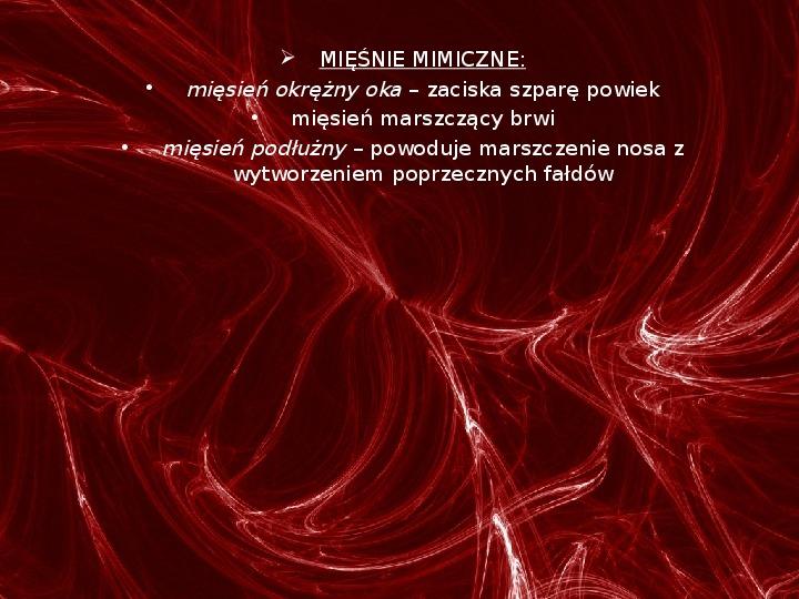 Mięśnie - narządu ruchu czynnego - Slajd 23