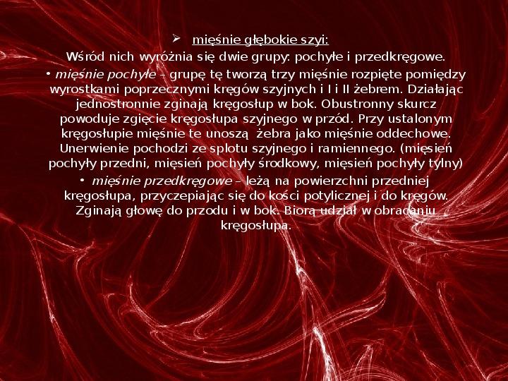 Mięśnie - narządu ruchu czynnego - Slajd 37