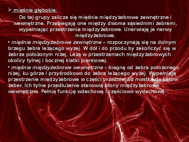 Mięśnie - narządu ruchu czynnego - Slajd 43