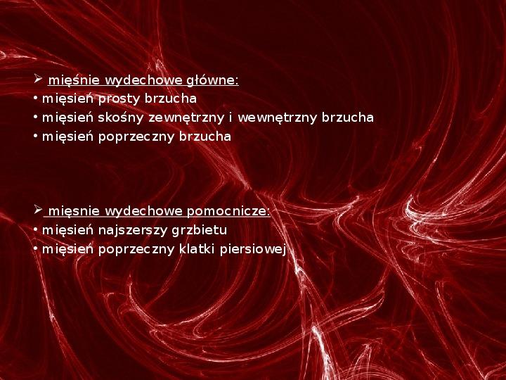 Mięśnie - narządu ruchu czynnego - Slajd 46