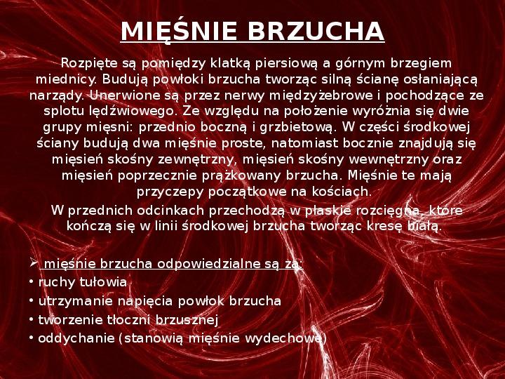 Mięśnie - narządu ruchu czynnego - Slajd 49