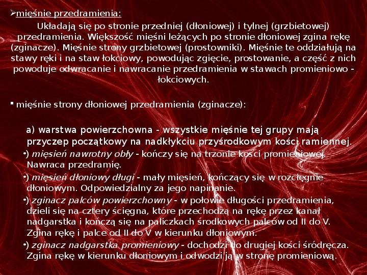 Mięśnie - narządu ruchu czynnego - Slajd 65