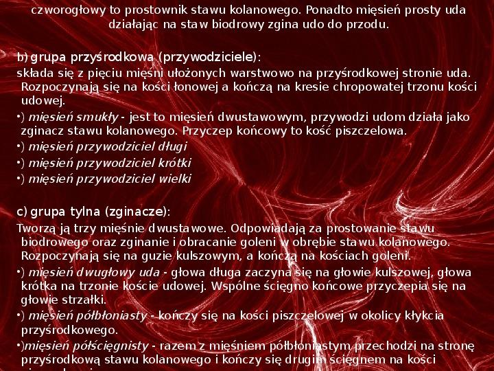 Mięśnie - narządu ruchu czynnego - Slajd 76
