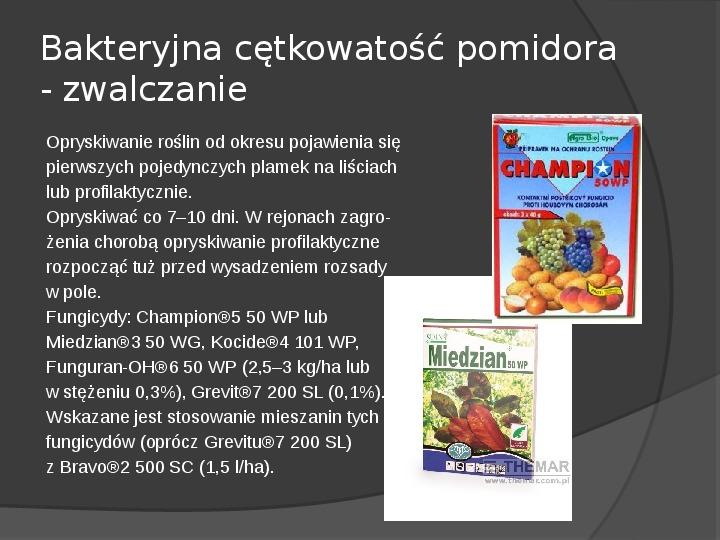 Choroby roślin warzywnych - Slajd 46