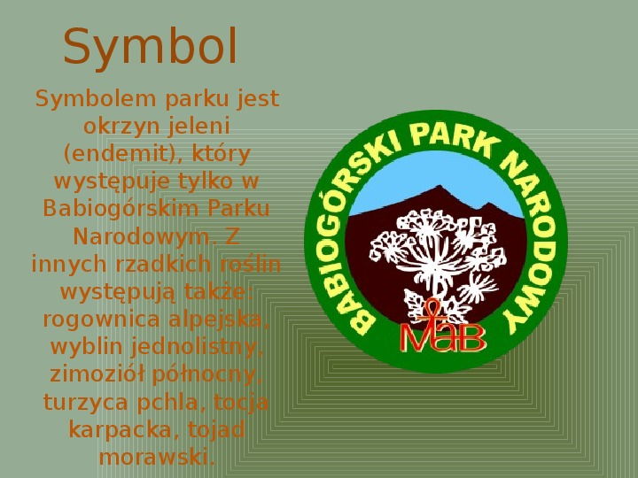 Babiogórski Park Narodowy - Slajd 2