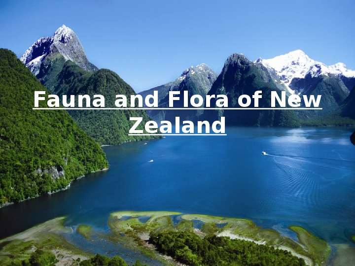 Fauna i Flora New Zealand - Slajd 1